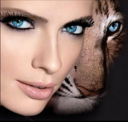 animalier3